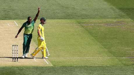 Kagiso Rabada celebrates after dismissing Chris Lynn in Adelaide.