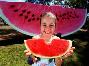 Giant melon to be Queensland's next Big Thing