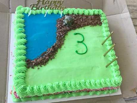 A friend came to the rescue and fixed Mason's cake before his birthday party.