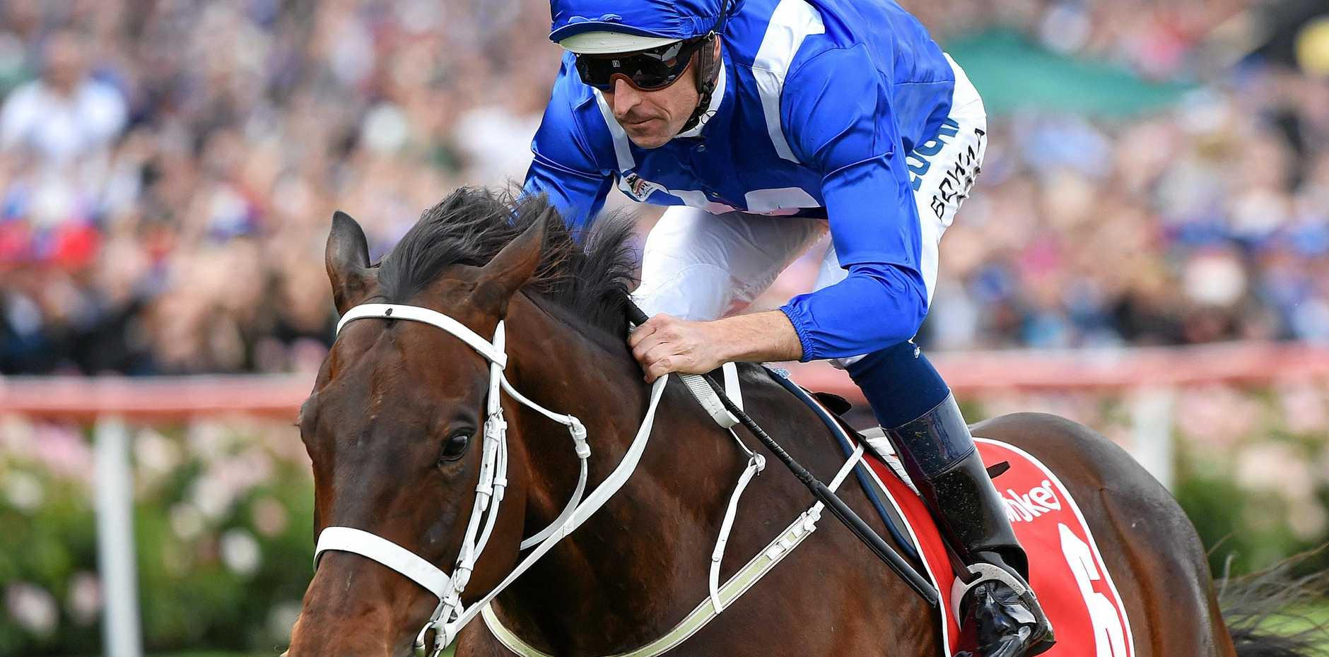 Hugh Bowman and Winx win their 4th cox plate at Moonee Valley, trained by Chris Waller. Moonee Valley Cox Plate race day races.