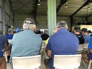Nordzucker deal dominates shed meeting conversation
