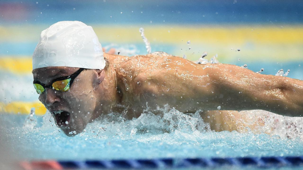 Mitch Larkin in action at the FINA Swimming World Cup. Picture: Getty