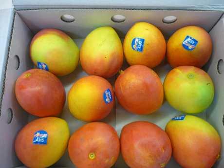 A box of Calypso mangoes.