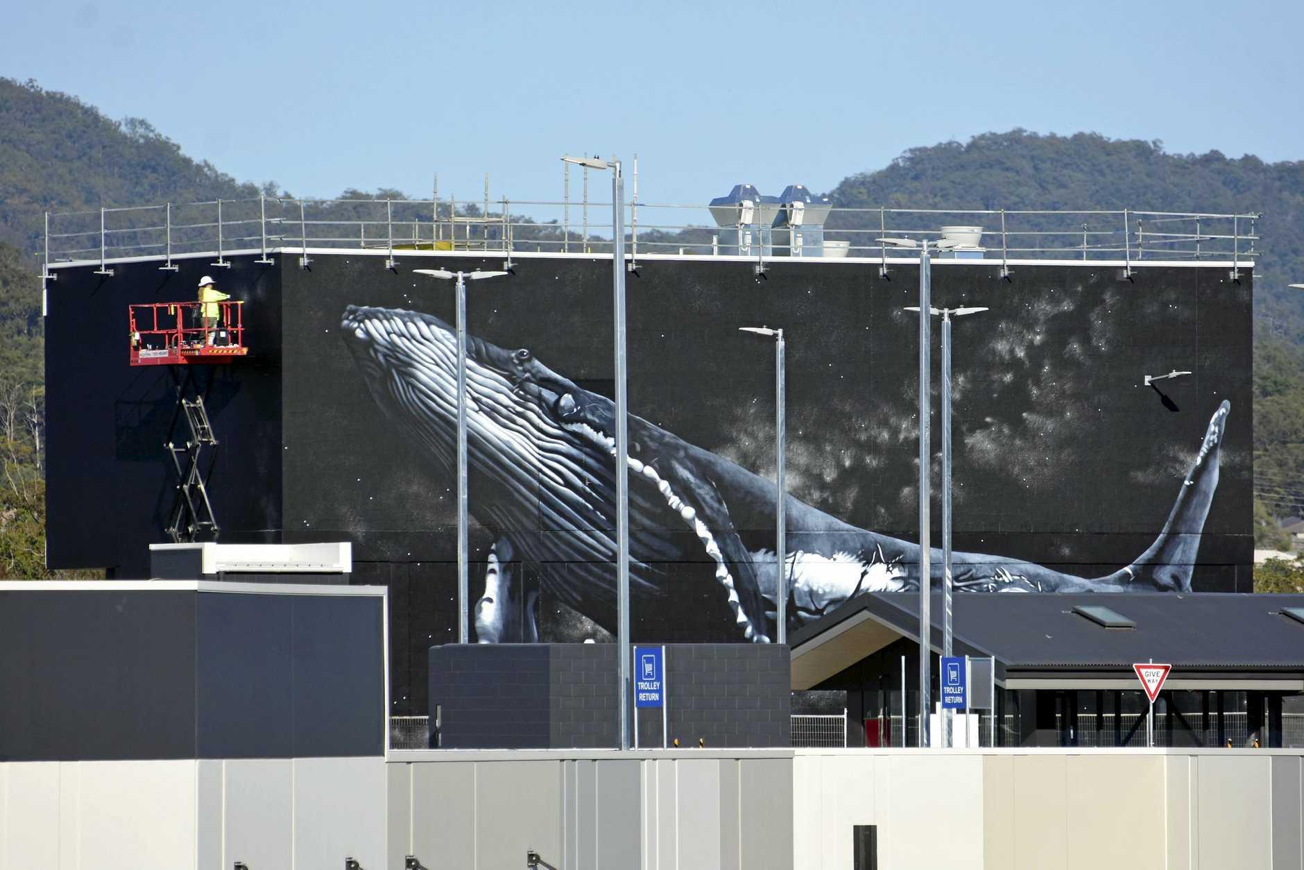 Whale mural.