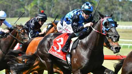 Jockey John Allen reckons Ringerdingding has Group 1 potential. Picture: Getty Images