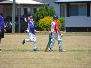 GALLERY: Stage two cricket