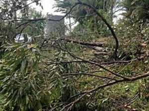 UPDATE: Power (mostly) restored to 1810 region households after storm