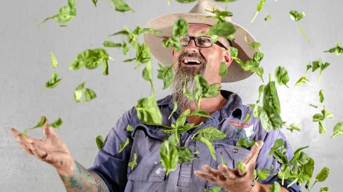 GREEN LEAVES: Gary Samuelsen owner of Ghost Gully Produce at Gatton.