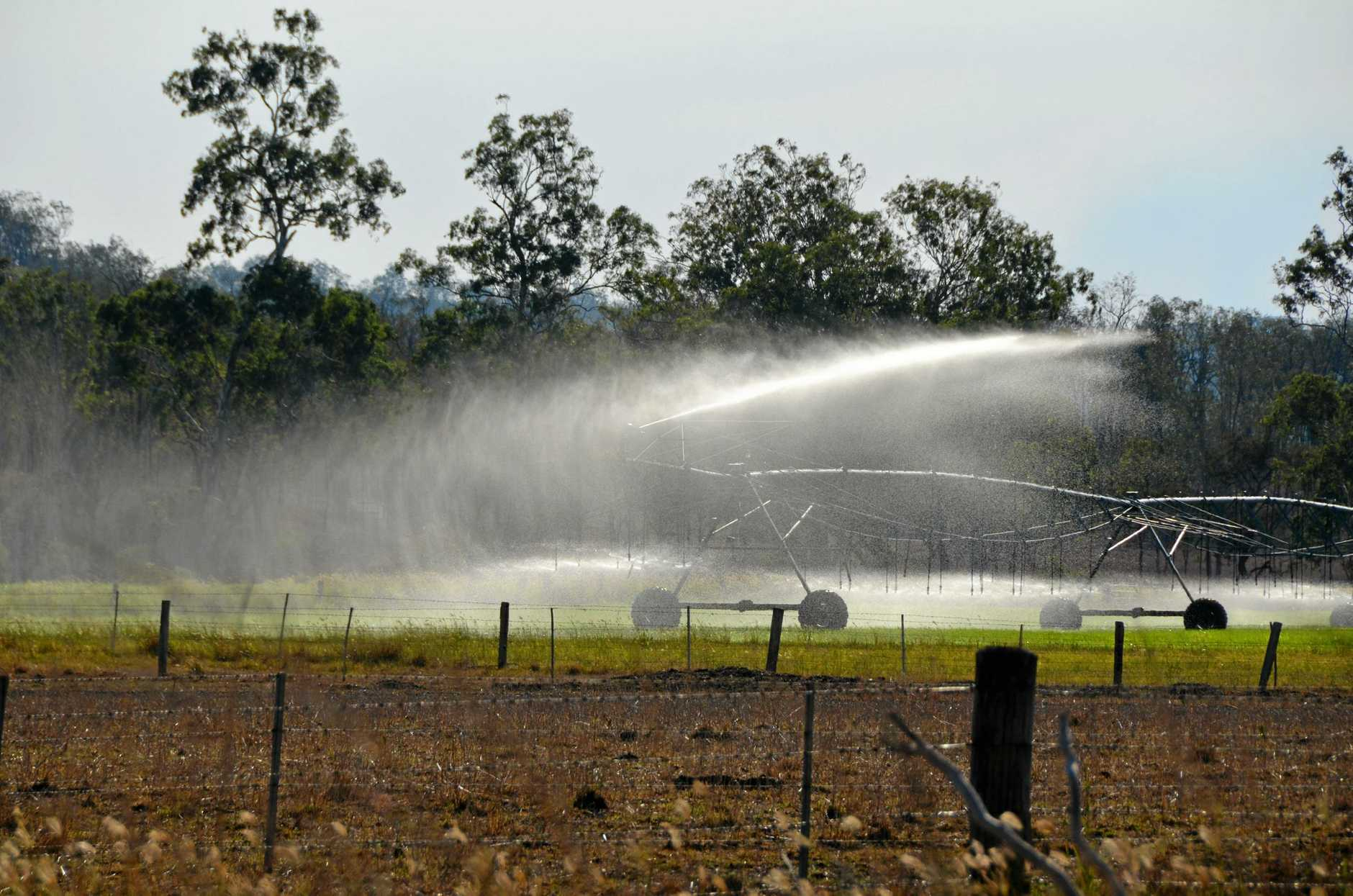 Irrigation puts patches of green in an otherwise brown landscape.   Photo Troy Kippen / South Burnett Times