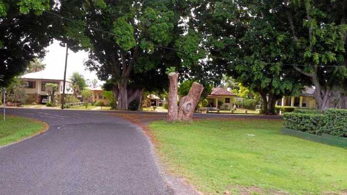 CVC to sit own with Aboriginal community over scar tree