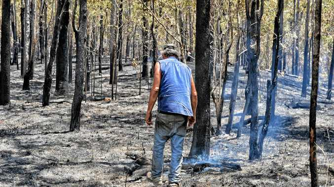 Joe Mastropaolo surveys the damage caused by the fire which is still burning on the western side of Mount Pinnacle.