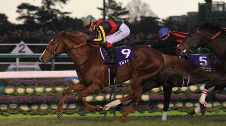"""Japan's Arima Kinen event is known as the """"people's race"""". Picture: Japan Racing"""