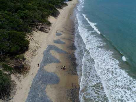 Toyah was found on Wangetti Beach. Picture: Stewart McLean