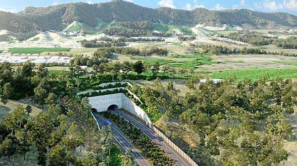 An artist impression of the land bridge proposed for Roberts Hill in the most recent concept plans released by the RMS.