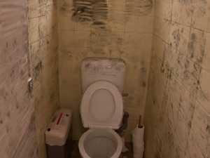 Disturbing new bathroom sex attack details