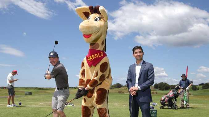 Shorten's $2m to save a giraffe