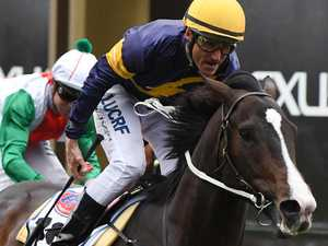 Grunt tailor-made for tilt at All-Star Mile