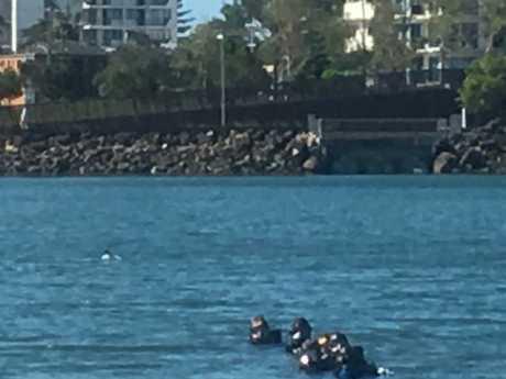 Police divers at Jack Evans Boat Harbour. Picture: Greg Stolz