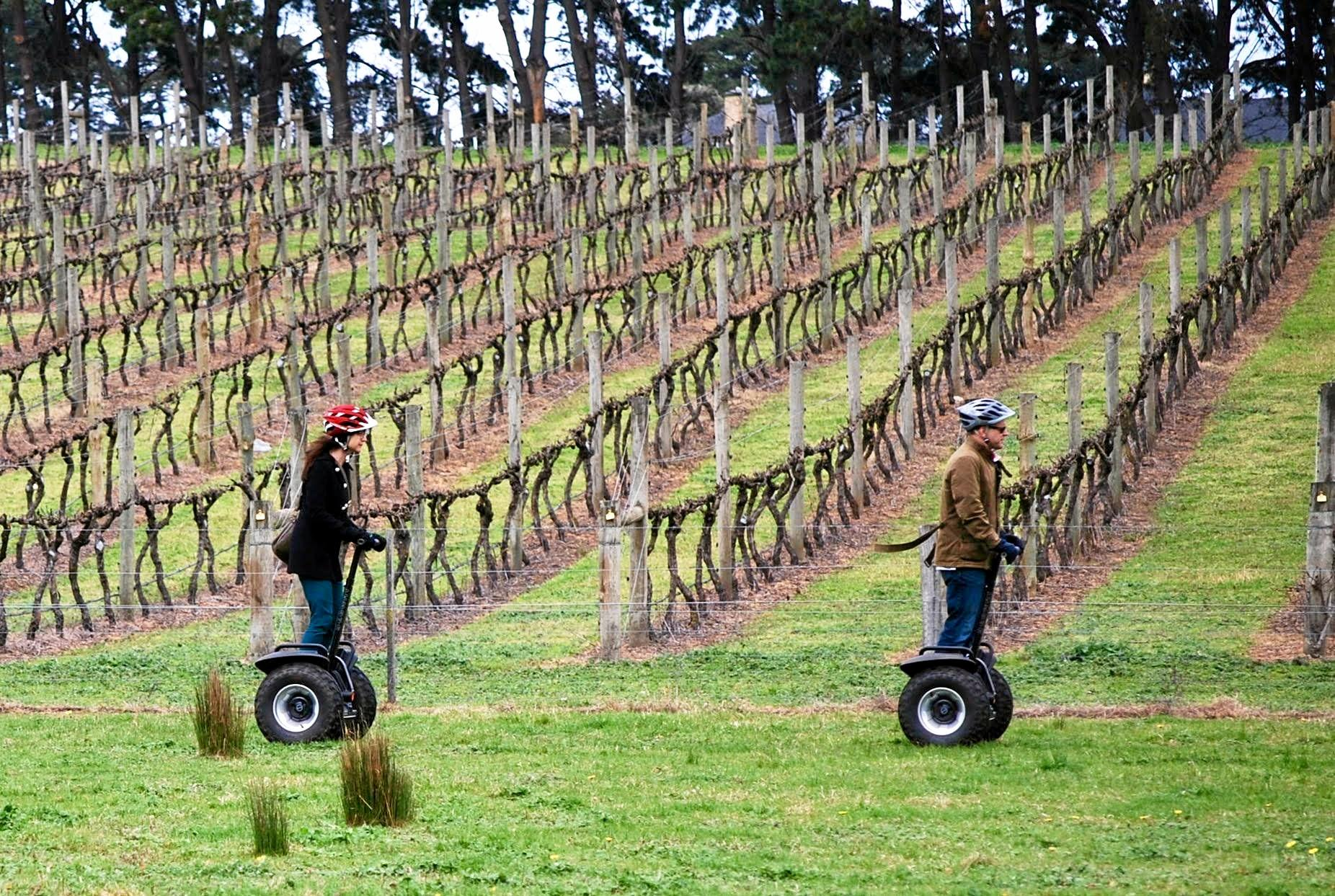 A segway tour of Leura Park Estate Winery with Segway Geelong.