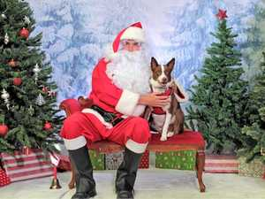 Get your pet a photo with Santa