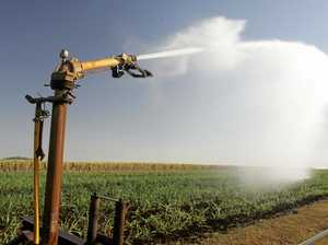 Water extraction targeted in unanimous council decision
