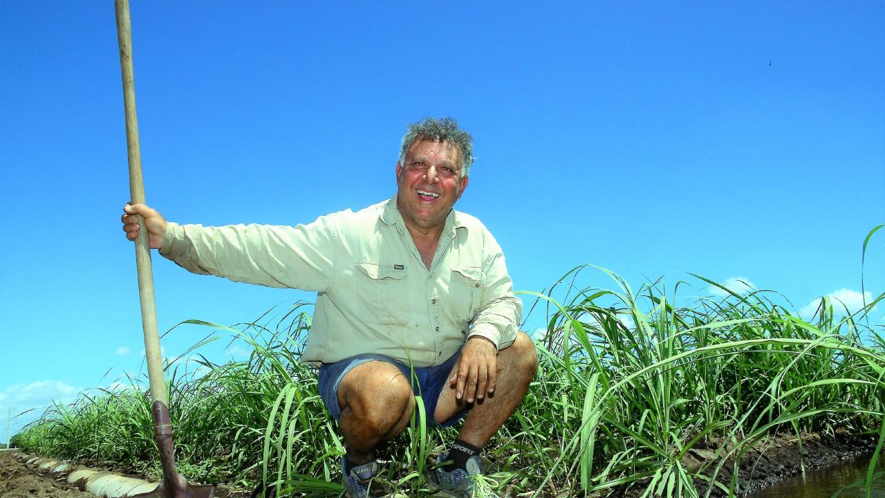 Burdekin farmer Michael Morano has not stopped irrigating this year. Photo: John Andersen