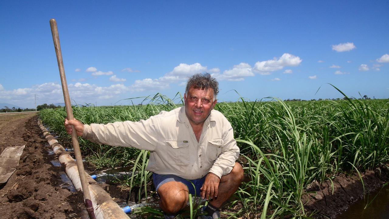 Burdekin farmer Michael Morano said power costs had doubled in the past 10 years. Photo: John Andersen