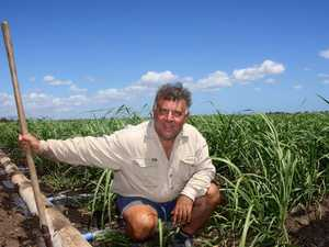 The true cost hurting NQ cane growers