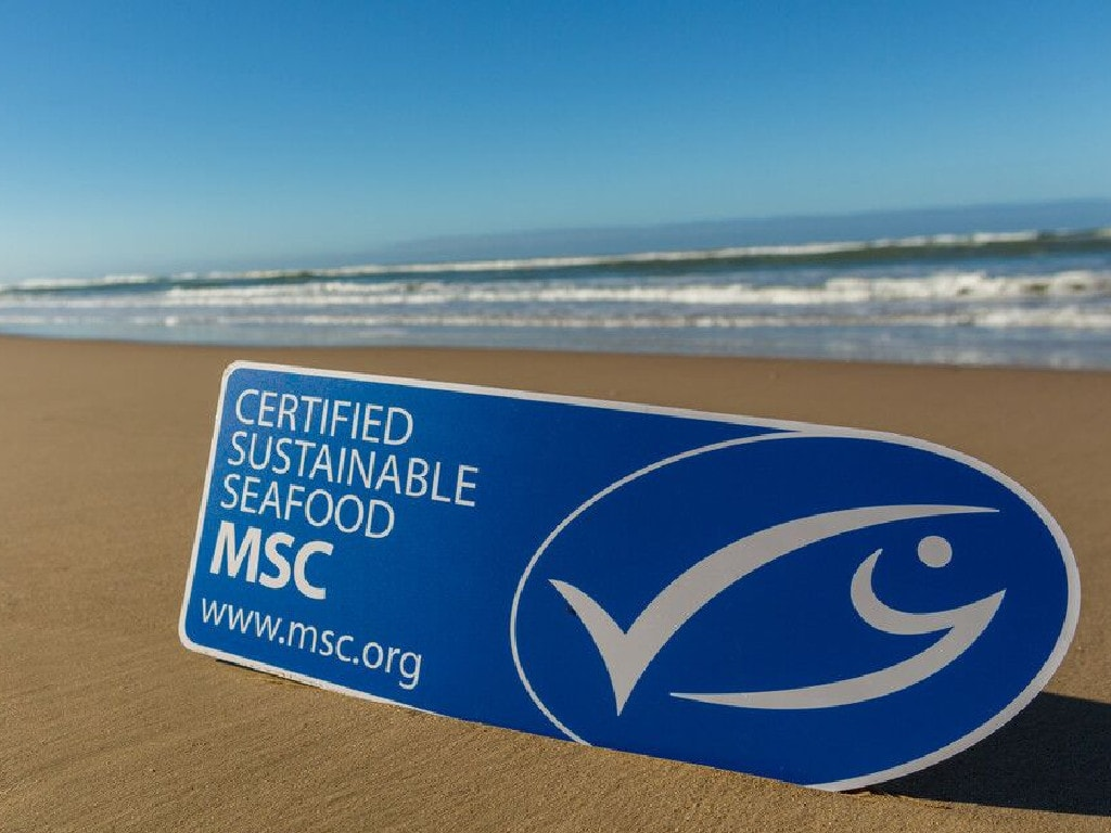The official MSC ecolabel shoppers can see on more than 400 products in Australia. Picture: MSC/Supplied