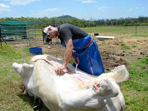 HOME GROWN:Farm butcher follows in his Dad's meaty footsteps