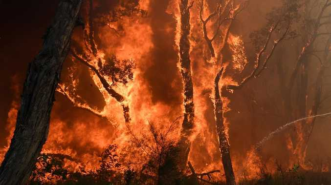 qld fires - photo #19
