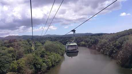View from the Skyrail Rainforest Cableway. Picture: Keith Woods
