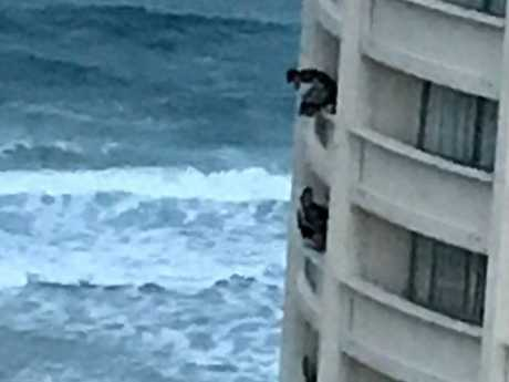 Schoolies teens clutch to the balcony on the Gold Coast.