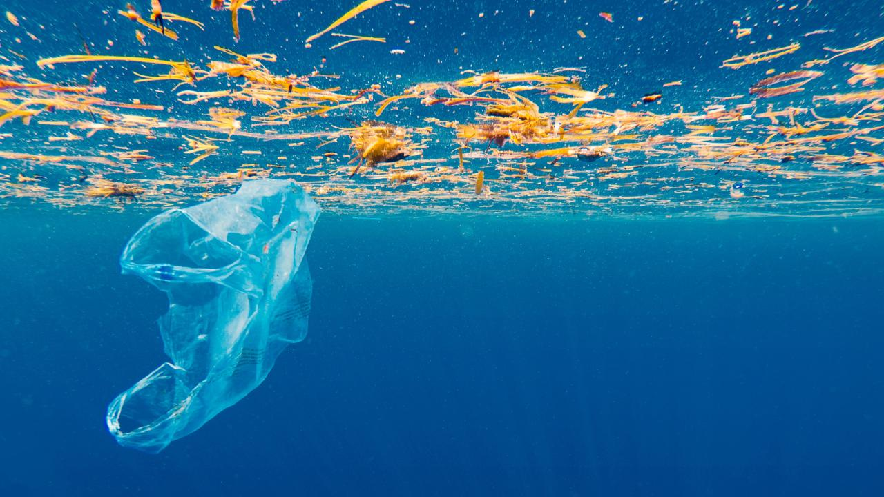 Australia's bigger threat than plastic bags.