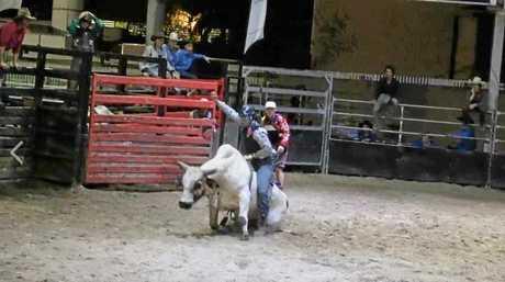 The bull breaks its leg .