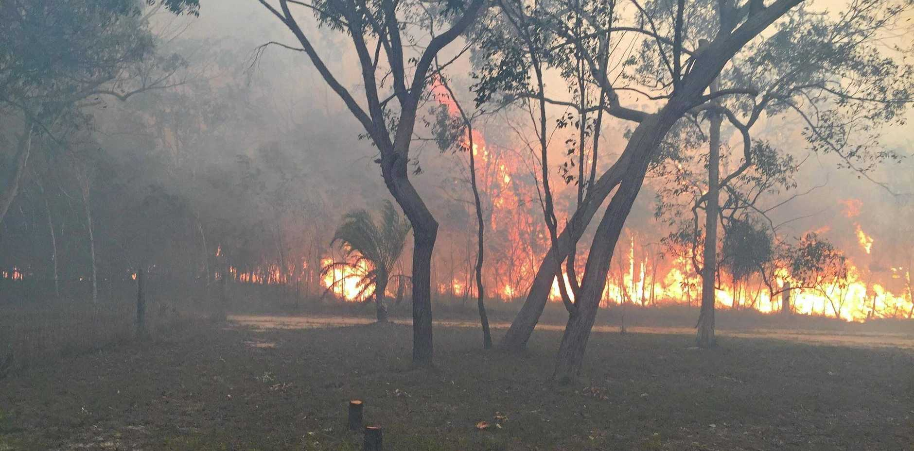 Bungadoo fire crews shared these harrowing images.