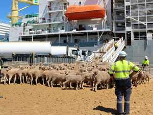 Farmers win in landmark live export case