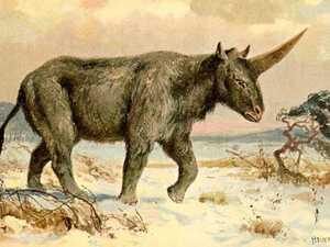 Revealed: When unicorns walked among us