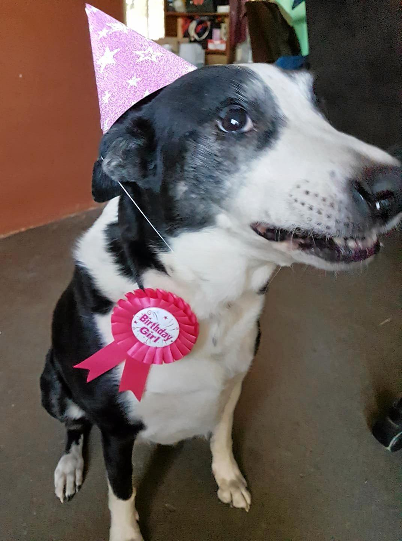 Zenas 10th birthday.