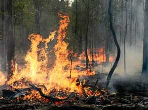 How to prepare now to reduce chance of severe bushfires