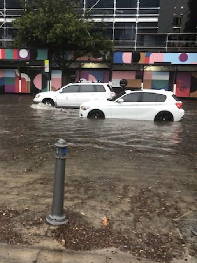 Cars navigate the floods at Glebe.