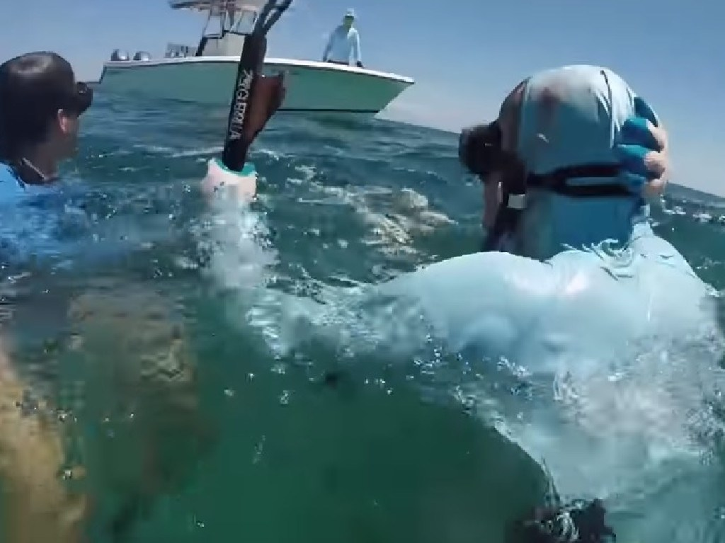 Friends rushed to Mr Krause's aid following vicious shark attack. Picture: YouTube