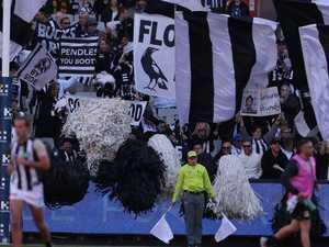 Magpies' big year reaps huge profit