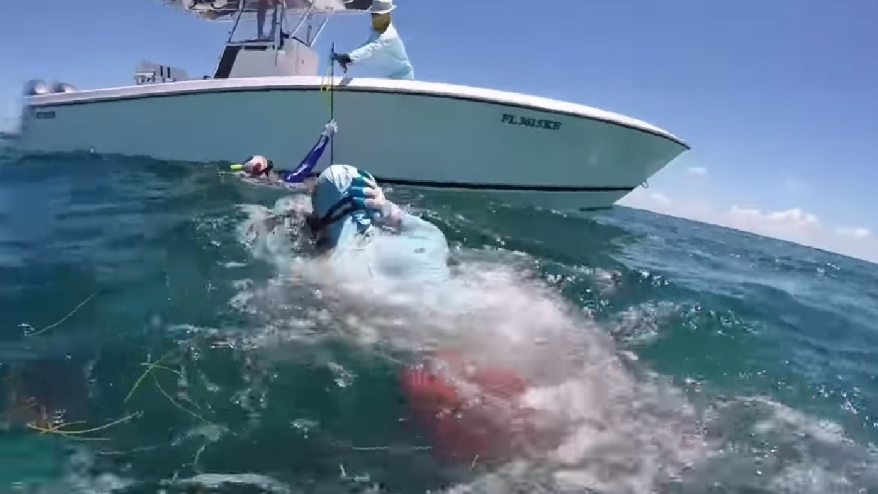 Mr Krause emerges from the water, clutching his injured head. Picture: YouTube
