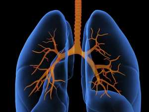 Vital asthma clue could lie in babies' lungs