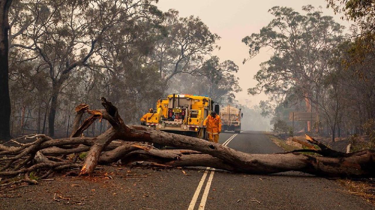 Emergency workers tend to fallen trees in a fire zone.