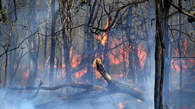 Grass fire on Raines Road near South Kolan.