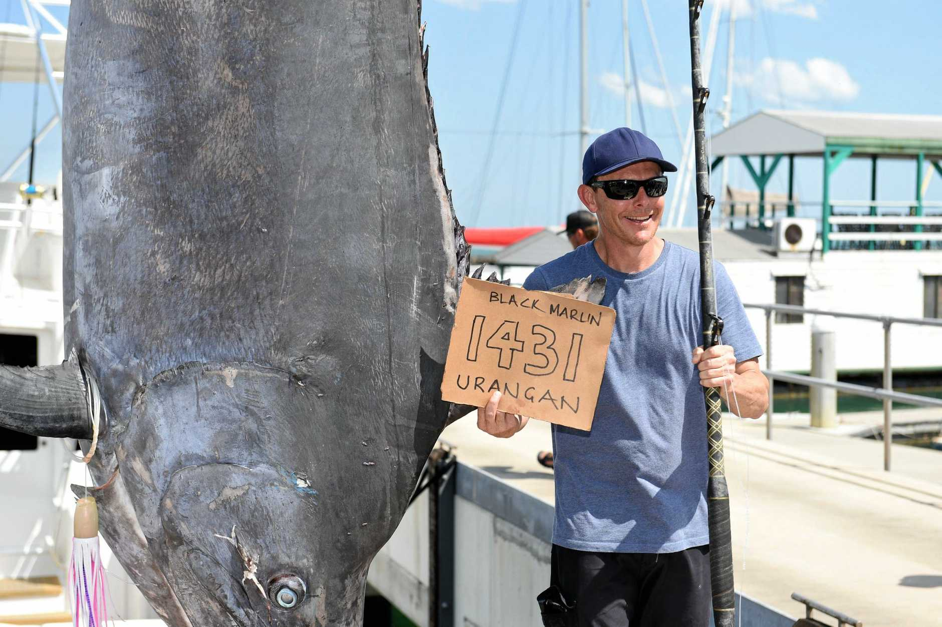 ALL EYES ON MARLINS: Interest in the Fraser Coast's game fishing market has spiked since angler Rob Crane hooked this 650kg black marlin last week.