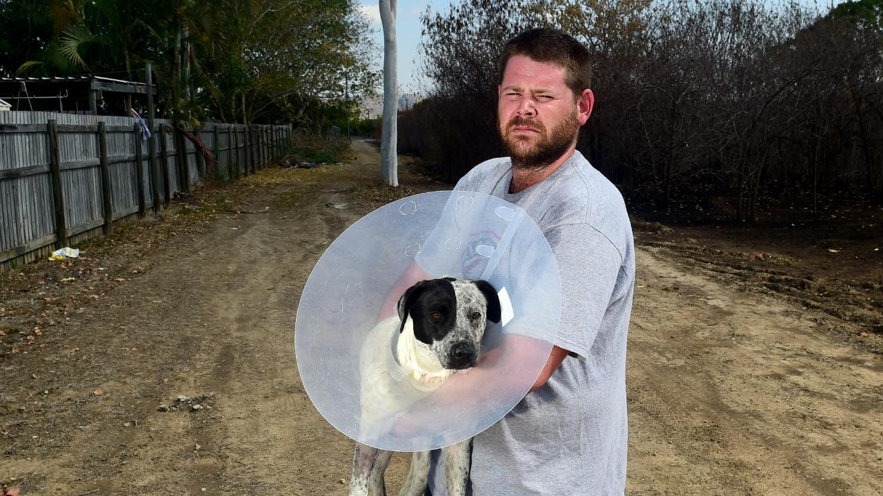 Rasmussen resident Matthew Bader with his surviving dog Tilly at the back of his home. Picture: Evan Morgan