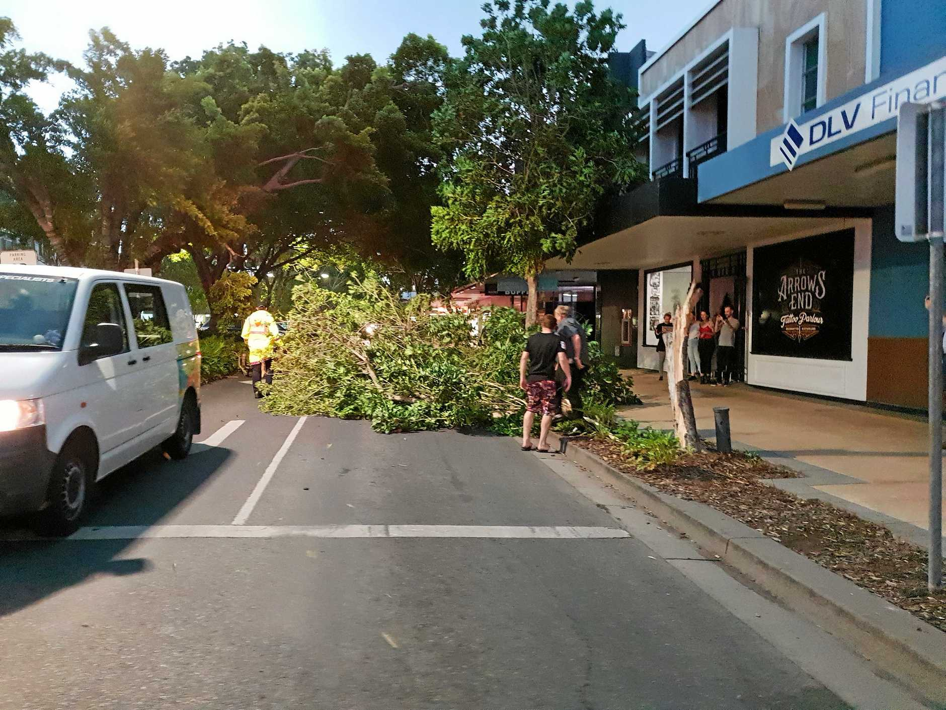 Members of the Rockhampton community help move a fallen tree on East St.